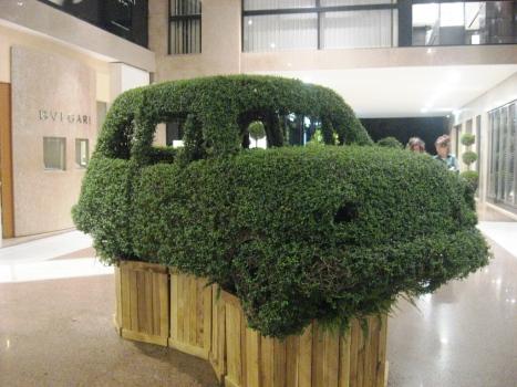 Bush - car