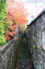 Autumn in Dinant