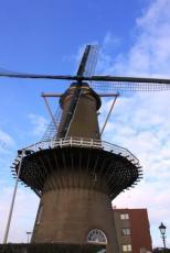 Rotterdam (36)