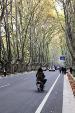 Nanjing (40)