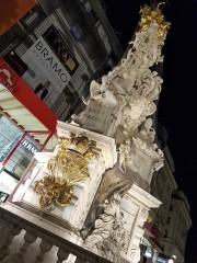 Vienna (36)