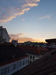 Vienna (38)
